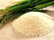 aromatic rice dari Garut