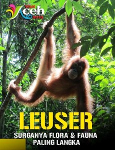 leuser di indonesiaproud wordpress com